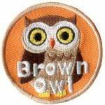 Brown Owl badge