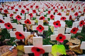 Poppies - crosses in field
